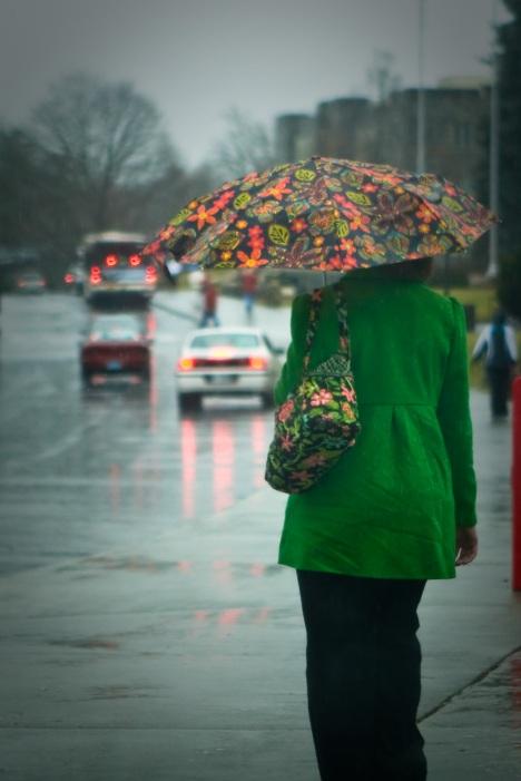 bha47079vt-rain